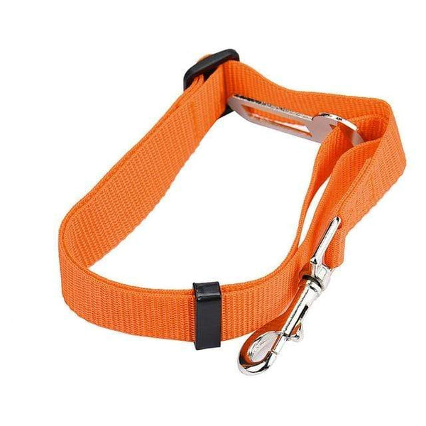 Dog Collar And Seat Belt - Max and Maci's Store