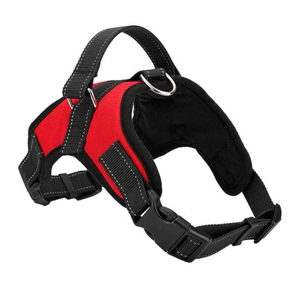 Max and Maci's Store Dog Collar A / S Breathable Harness Dog Leads Neck Collar