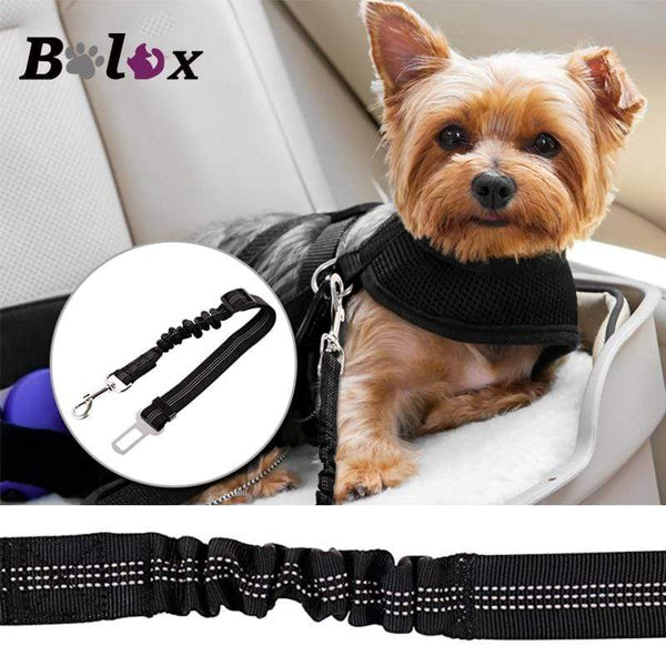 Adjustable Pet Elastic Safety Seat Belt - Max and Maci's Store