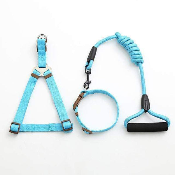 Max and Maci's Store Dog Collar blue-1 / L pet dog leash Traction Rope