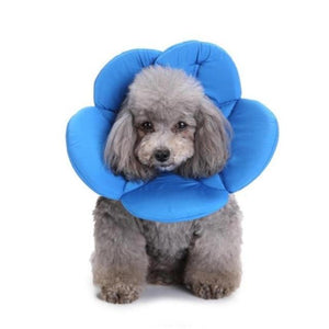 Max and Maci's Store Dog Collar Blue / S Polyester Sponge Pet Elizabethan Collar Dog