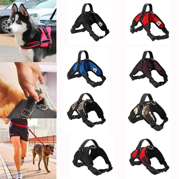 Max and Maci's Store Dog Collar Breathable Harness Dog Leads Neck Collar