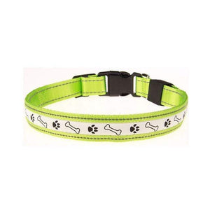 Max and Maci's Store Dog Collar Green / L Premium Adjustable Dog Collar