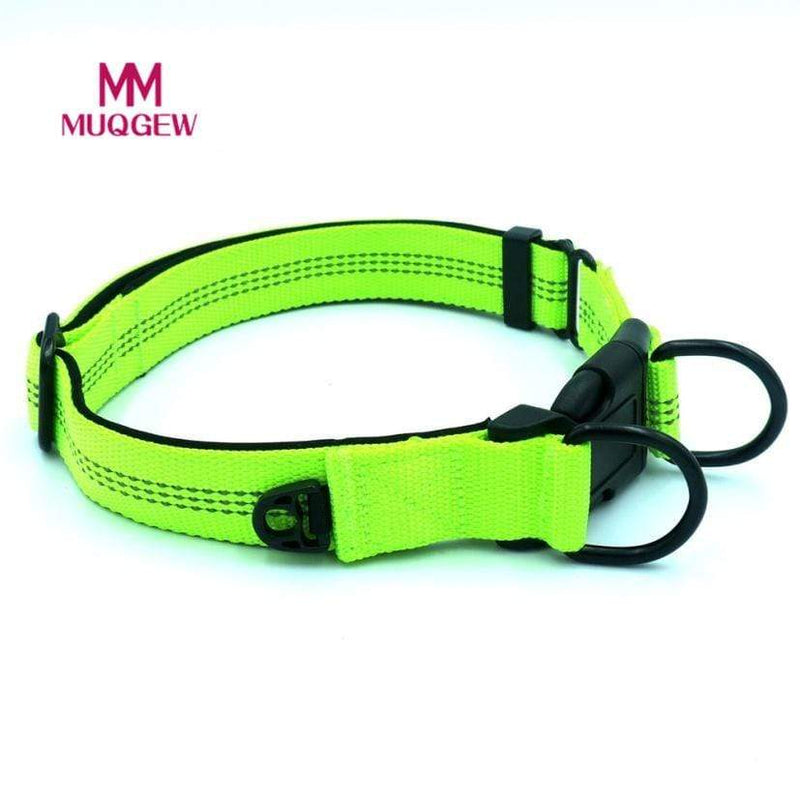 Max and Maci's Store Dog Collar Hot Safety Pet Collar For Up Nylon