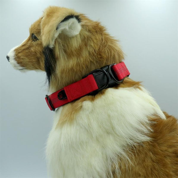 Hot Safety Pet Collar For Up Nylon - Max and Maci's Store