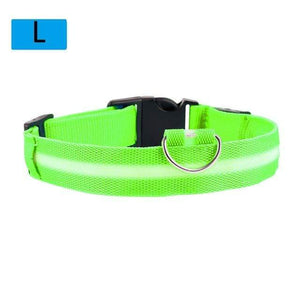 Max and Maci's Store Dog Collar Light Green / L Dog Luminous Fluorescent Collars
