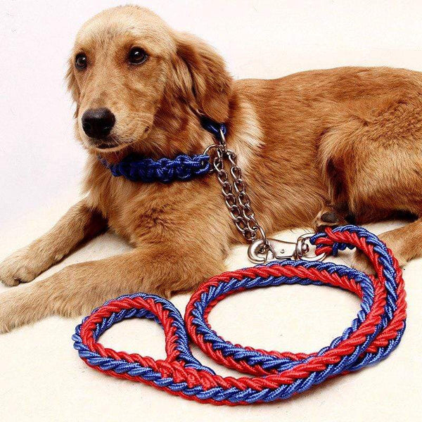Luxury Strong Dog Leashes Collar Set - Max and Maci's Store