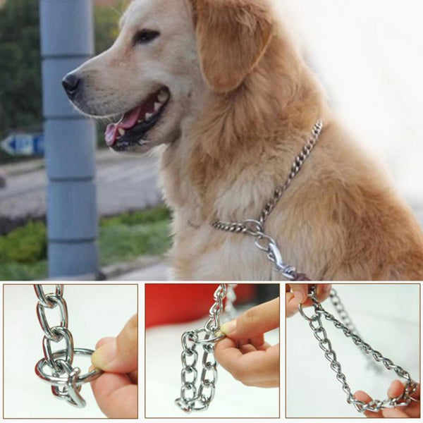 Metal Stainless Steel Chain Dog Collar - Max and Maci's Store
