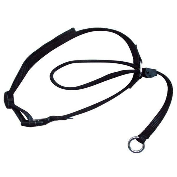 Nylon Dog Head Collar - Max and Maci's Store