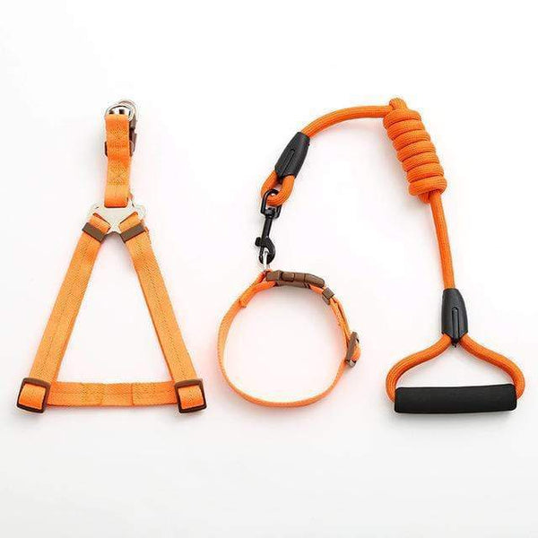 Max and Maci's Store Dog Collar orange-1 / L pet dog leash Traction Rope
