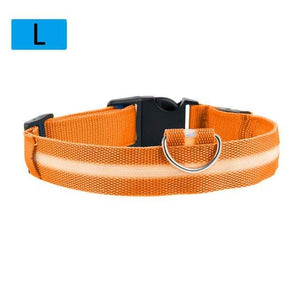 Max and Maci's Store Dog Collar Orange / L Dog Luminous Fluorescent Collars