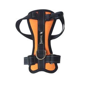 Max and Maci's Store Dog Collar Orange / L Safety Dog Chest Belt