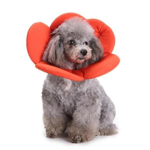 Max and Maci's Store Dog Collar Orange / S Polyester Sponge Pet Elizabethan Collar Dog