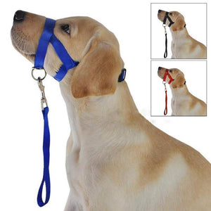 Pet Dog Anti Bark Bite Head Leash
