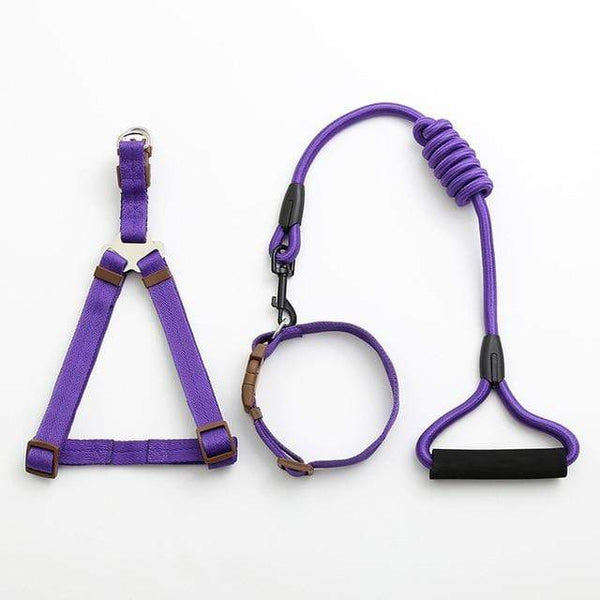 Pet Dog Leash Traction Rope - Max and Maci's Store