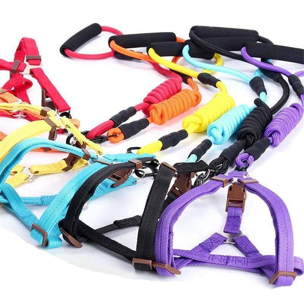 Max and Maci's Store Dog Collar pet dog leash Traction Rope