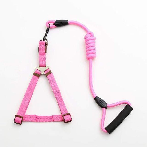 Max and Maci's Store Dog Collar pink / L pet dog leash Traction Rope