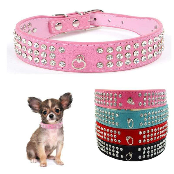 Puppy Little Small Breeds Dog Leather Collars - Max and Maci's Store