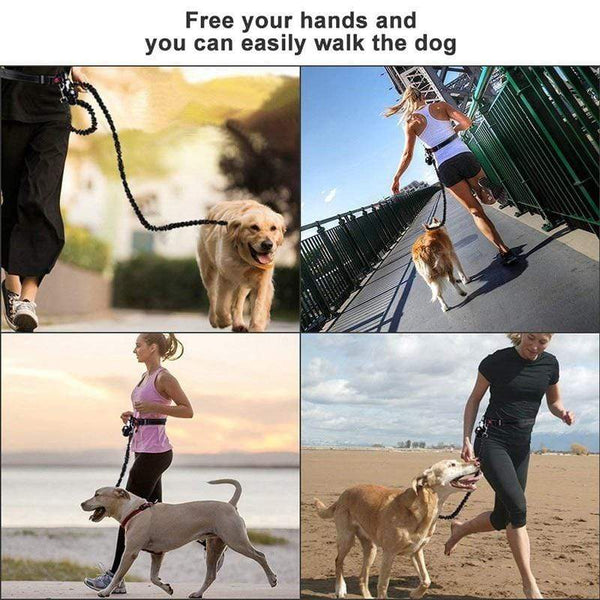 Quality Reflective Hands Free Dog Leash - Max and Maci's Store