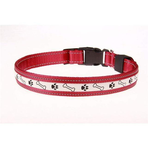 Max and Maci's Store Dog Collar Red / L Premium Adjustable Dog Collar