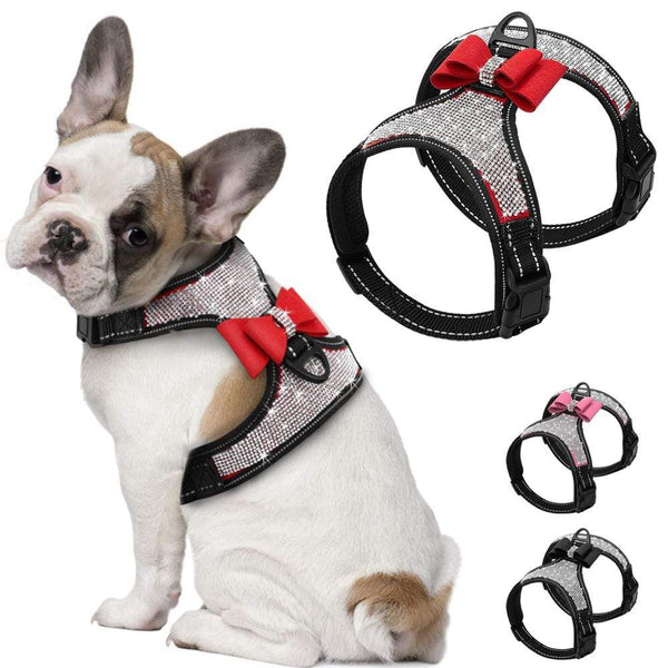 Rhinestone Harness For Dogs - Max and Maci's Store