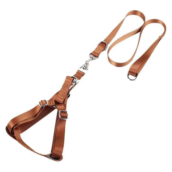Safety Pets Acessorios 1Inch Width Large Dog Harness Leash - Max and Maci's Store