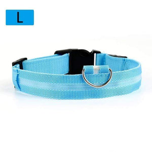 Max and Maci's Store Dog Collar Sky blue / L Dog Luminous Fluorescent Collars