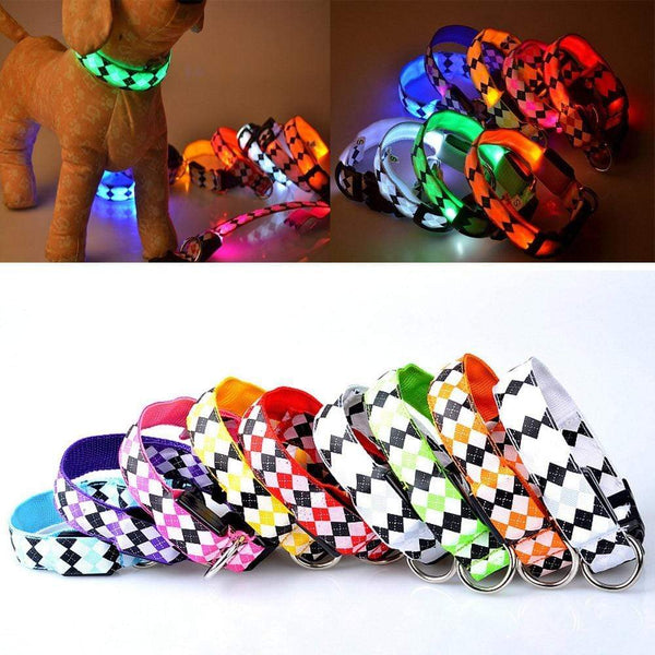 Usb Pet Dog Led Glow Light Leash Collar - Max and Maci's Store