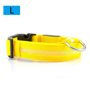 Max and Maci's Store Dog Collar Yellow / L Dog Luminous Fluorescent Collars