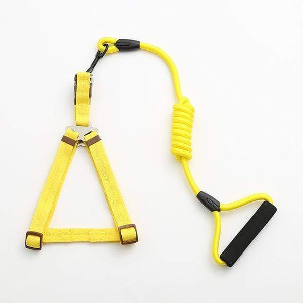 Max and Maci's Store Dog Collar yellow / L pet dog leash Traction Rope