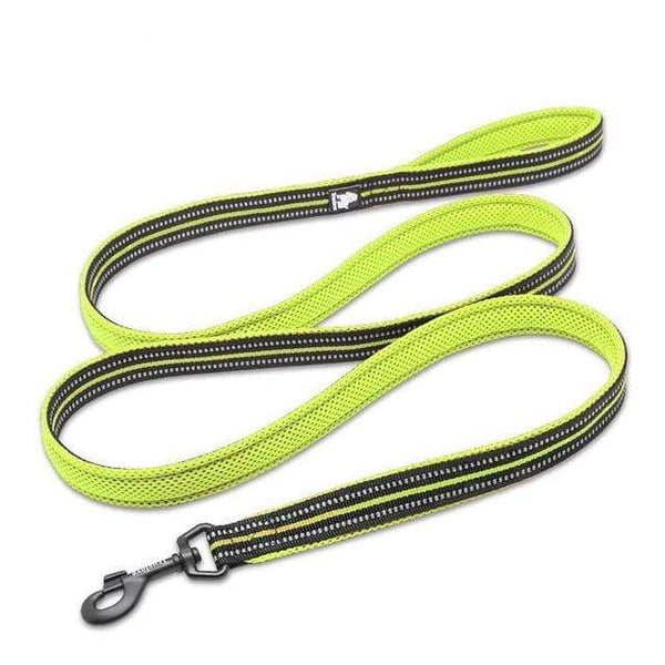 200Cm Nylon Dog Lead Leash Running Reflective - Max and Maci's Store