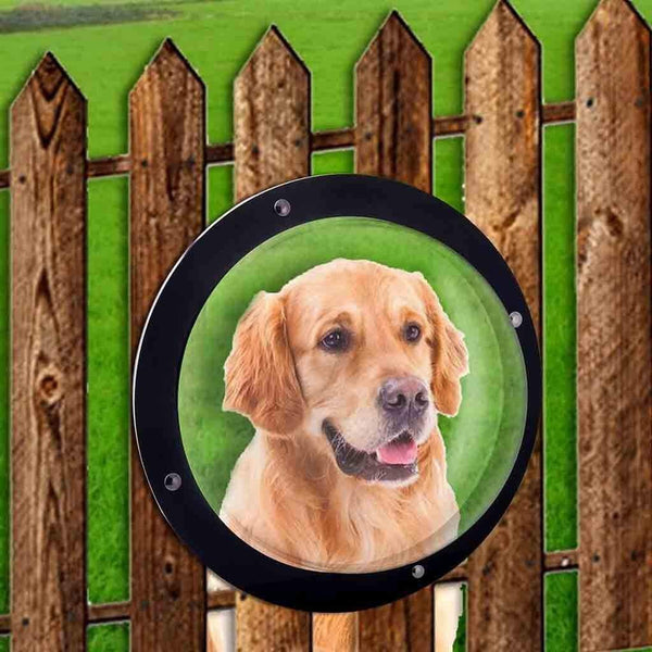 Max and Maci's Store Dog Doors, Houses & Furniture as the picture show Pet Peek door Fence Bubble Window For Dogs