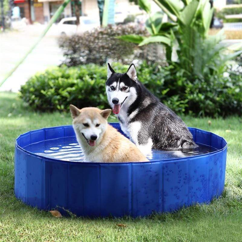 Max and Maci's Store Dog Doors, Houses & Furniture Foldable Dog Swimming Pools