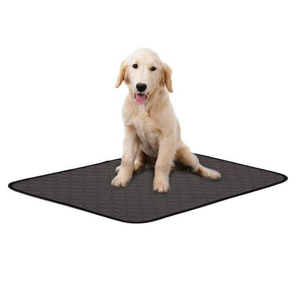 Max and Maci's Store Dog Doors, Houses & Furniture H / L Dog Urine Absorbent Training Pad Waterproof