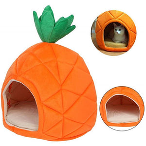 Max and Maci's Store Dog Doors, Houses & Furniture Orange / None Nest Teddy dog Fruit cotton bed