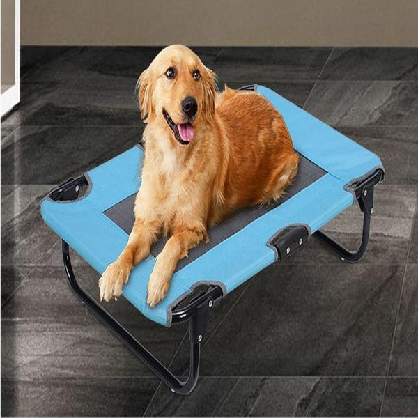 Steel Camp Bed Indoor Outdoor Travel Dog Sofa - Max and Maci's Store