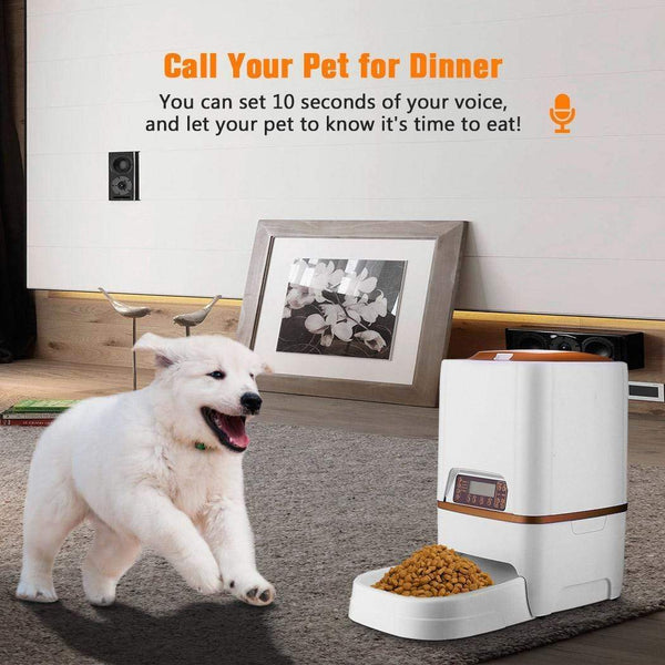 6L Automatic Pet Food Feeder - Max and Maci's Store