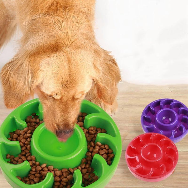 Anti Quick Gulp Feeder Healthy Dish Bowl For Dog - Max and Maci's Store