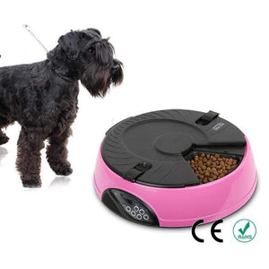 Max and Maci's Store Dog Feeding Automatic Feeder Dog Food Bowl With 6 Meal Compartments