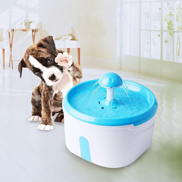Max and Maci's Store Dog Feeding Blue / L 2.2L Automatic Pet Feeder For Cats Dogs