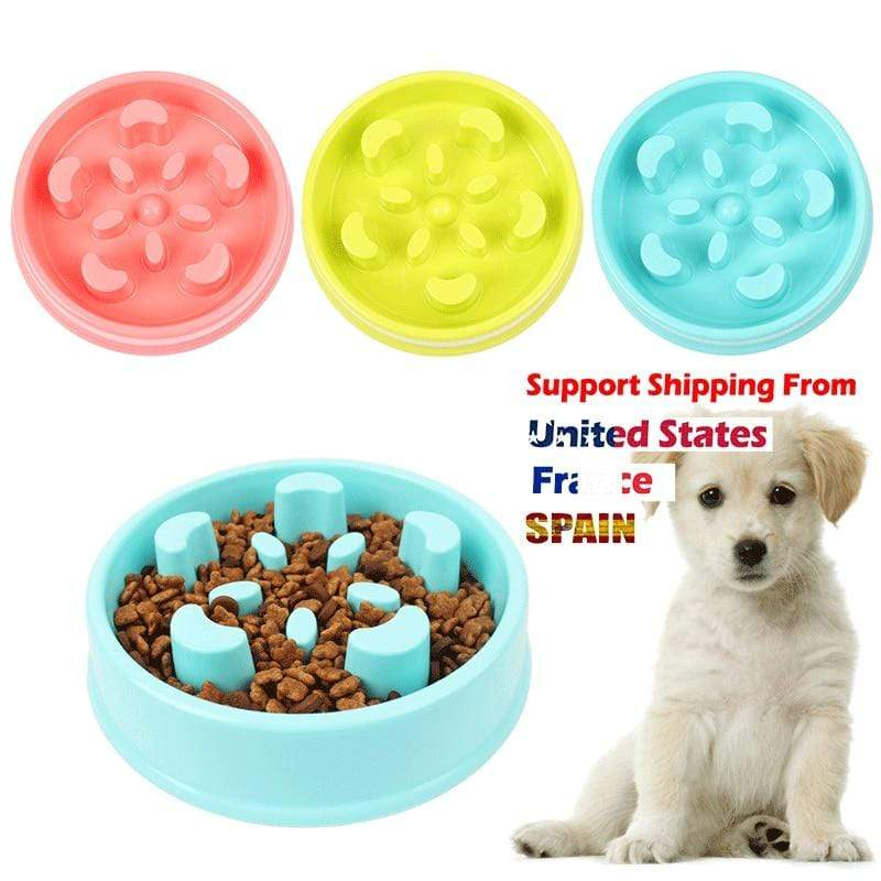 Max and Maci's Store Dog Feeding Light Green Pet Dog Feeding Food pet bowl