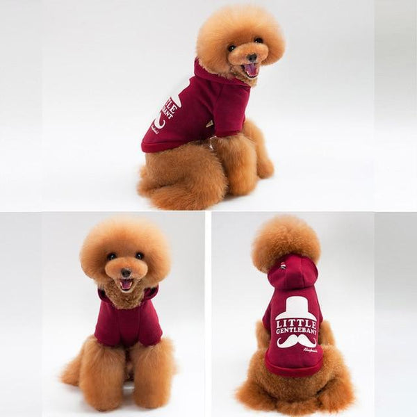 Spring Autumn Fashion Leisure Dog Hoodies - Max and Maci's Store