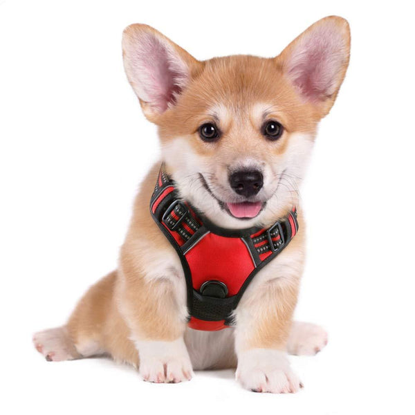 Dog No-Pull Harness Adjustable - Max and Maci's Store