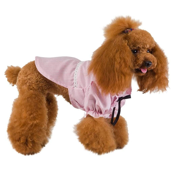 Fashion Cute Dog Shirts - Max and Maci's Store
