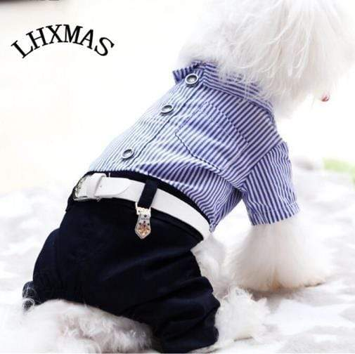 Max and Maci's Store Dog Shirts New Style Dog Formal Clothes
