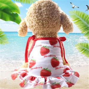Max and Maci's Store Dog Shirts Strawberry Dress / L Banana Pineapple Strawberry Print Couple Dogs Clothes