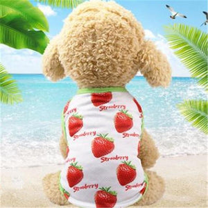 Max and Maci's Store Dog Shirts Strawberry Vest / L Banana Pineapple Strawberry Print Couple Dogs Clothes