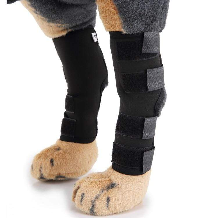 Max and Maci's Store Dog Socks Extra Supportive Dog Canine Rear Leg Hock Joint Wrap Protects