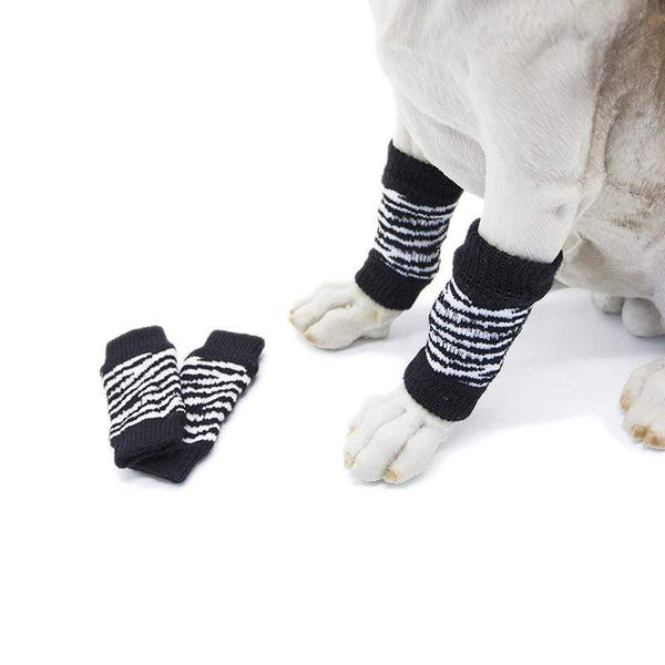 Warm Dog Knee Pads - Max and Maci's Store