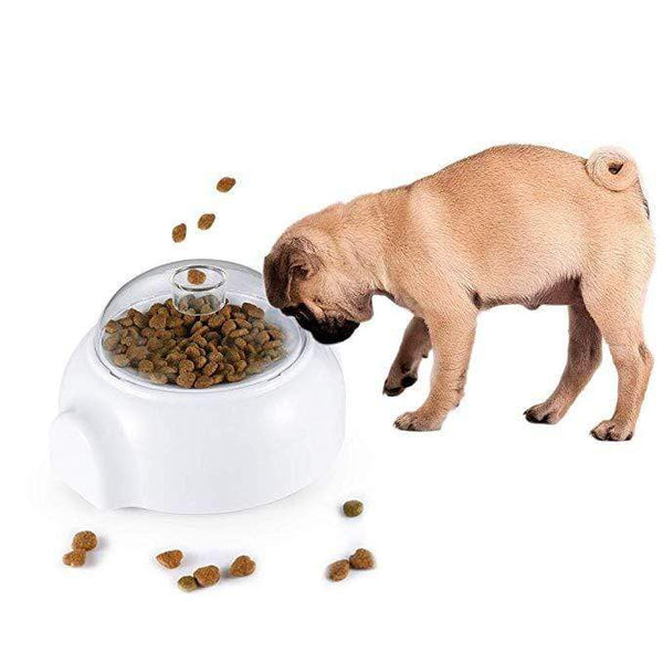 Automatic Funny Dog Feeder Toys - Max and Maci's Store